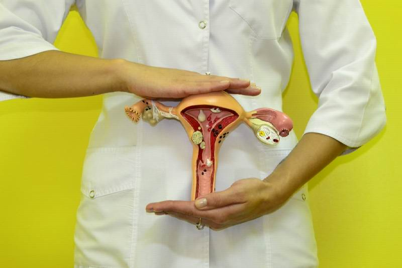Предраковые заболевания матки